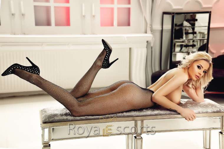 GFE Young Escort - Vicky